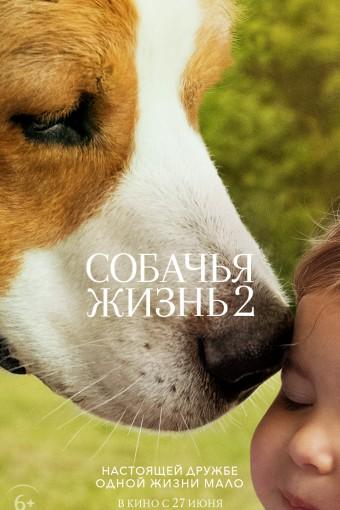 Собачья жизнь 2 смотреть в кино в Калуге